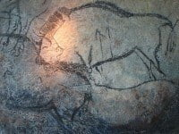 Black bison in the cave of Niaux