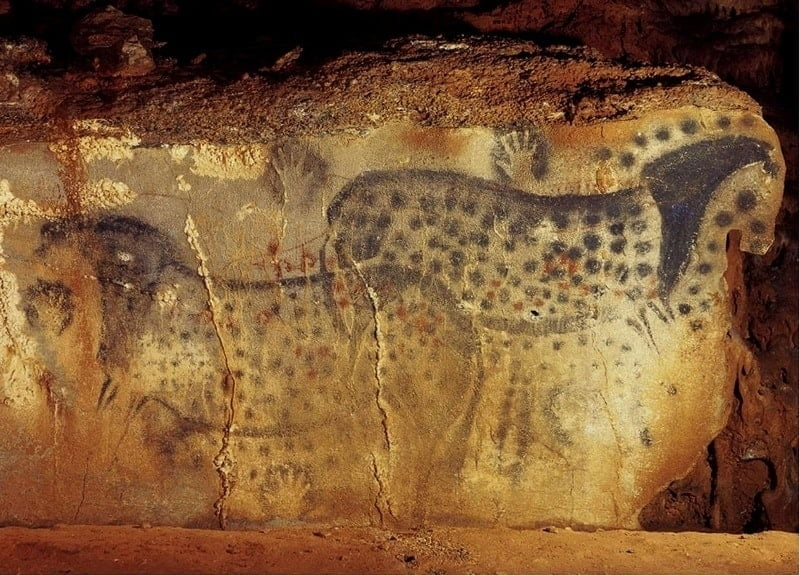 Image result for pech merle cave