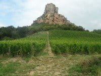 The vineyard at the foot of the Rock of Solutré - taken from the south west..