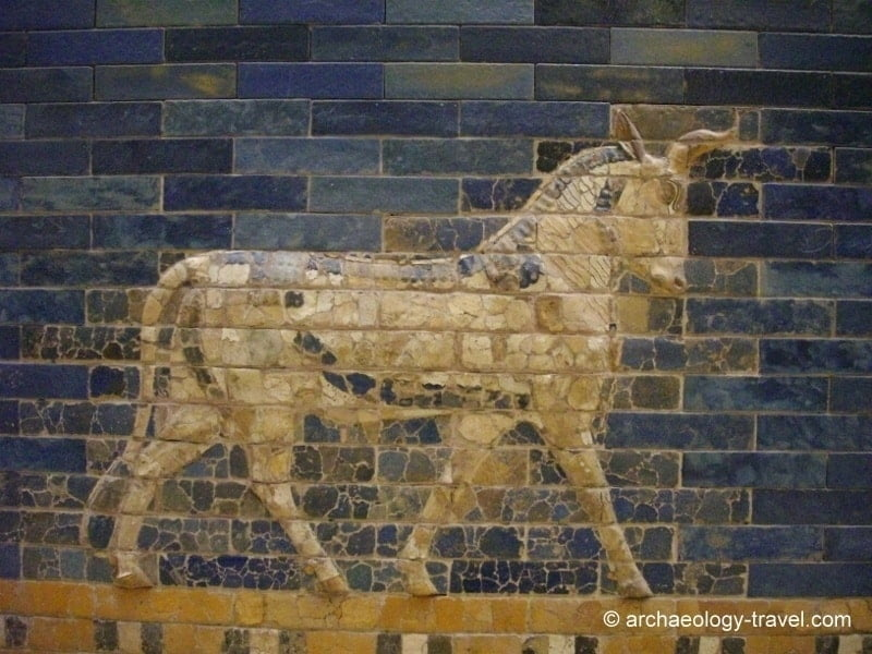 Close up of an auroch on the Ishtar Gate.