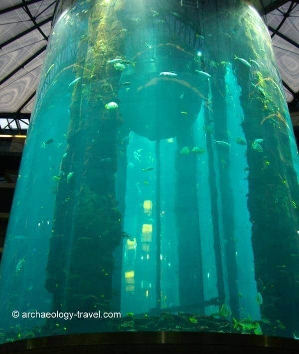 The World's largest cylindrical aquarium.