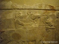 Close up of reliefs from the wall of the Assyrain palace of Khorsabad.