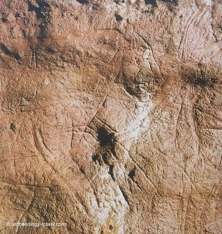 Combarelles - grotte - visite - images - Hominidés