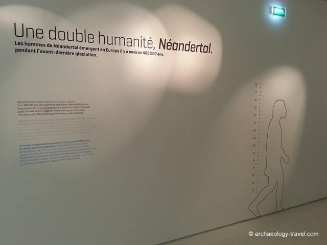 Introductory display on the Neanderthals at the Pôle international de la Préhistoire.