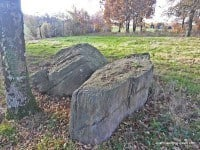 The collapsed megaliths that once formed a dolmen.