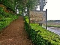 Archaeology Travel   Grottes de Cougnac   1