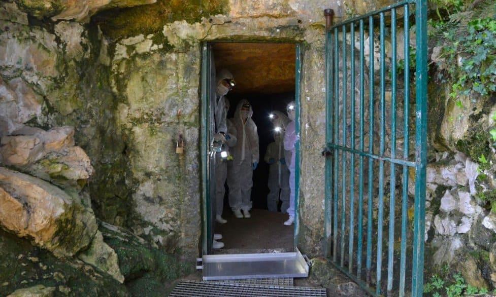 Entering the cave of Altamira with bio-hazard suits.