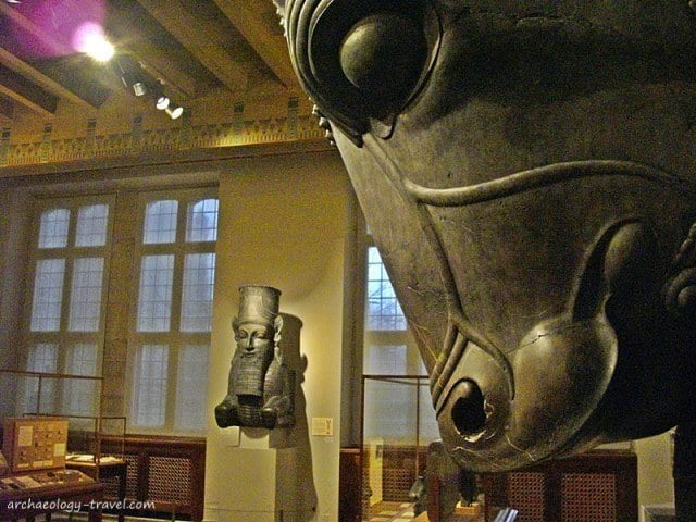 Colossal Bull Head, Oriental Institute Museum.