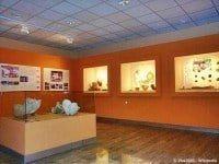 Prehistoric displays at the Archaeological Museum of Florina © Vlas2000 - Wikipedia