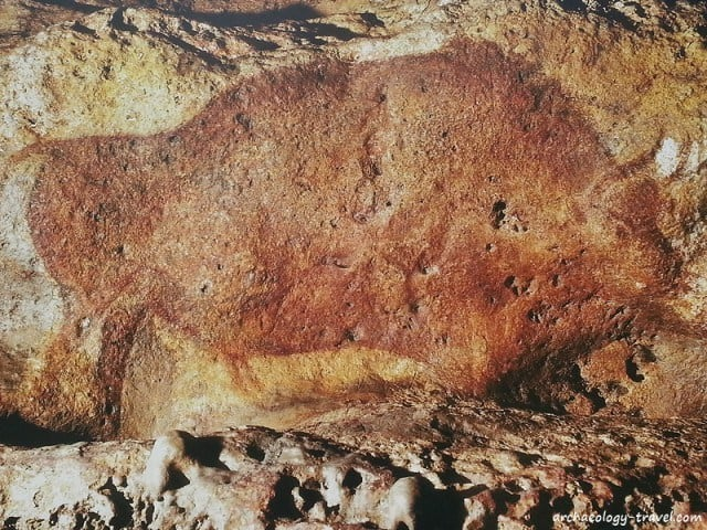 One of the many spectacular paintings of a bison in Font de Gaume Cave.