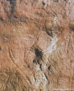 One of the many incised images in the cave of Les Combarelles.