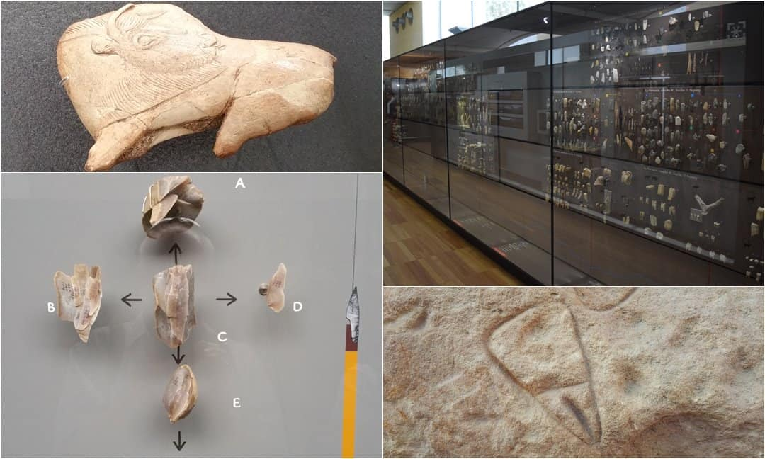 Displays in the national prehistory museum in Les Eyzies, France.
