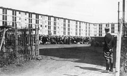 People being held at the Drancy Internment before they were deported to Germany.