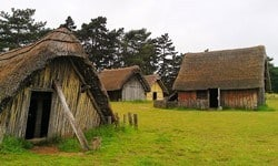 Reconstructions of Anglo-Saxon houses at West Stow, Suffolk.