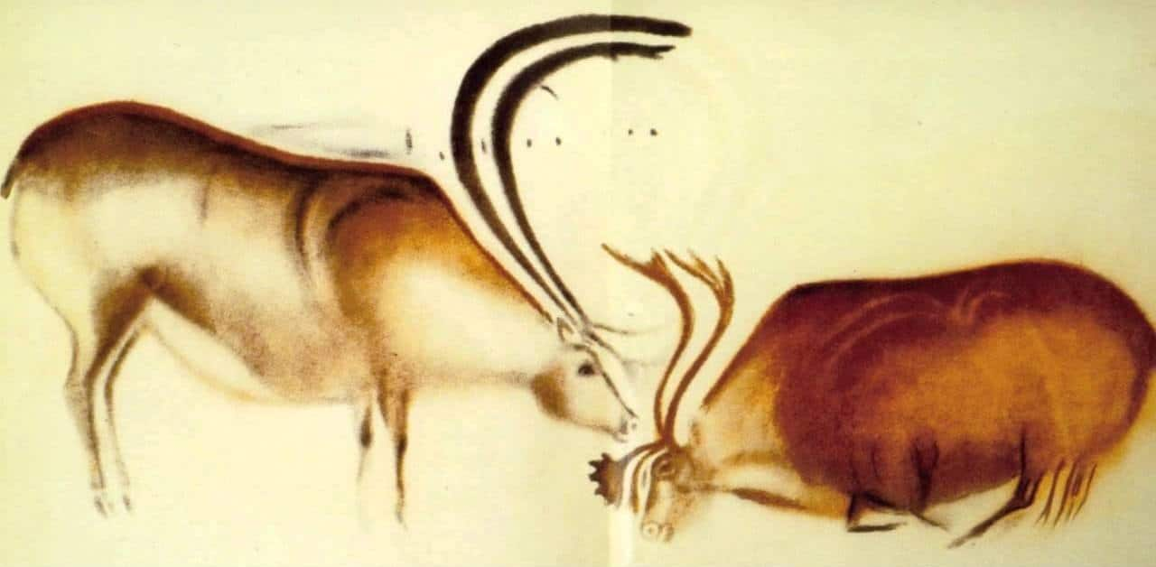 A reproduction of the two reindeer facing each other in Font de Gaume.