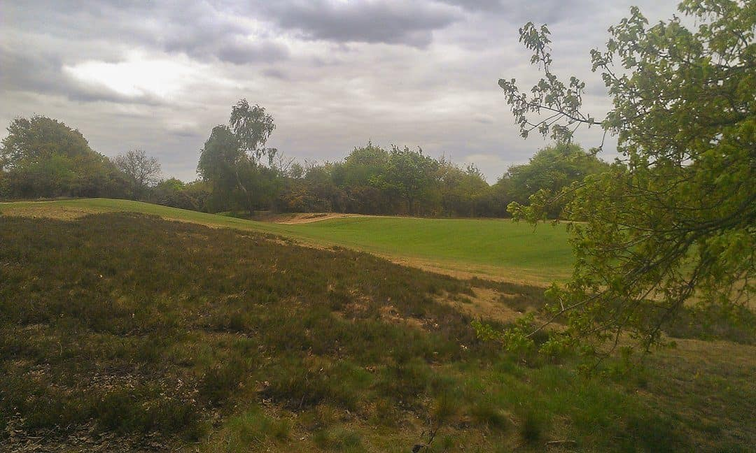A section of the ditch-and-bank- earthworks that make up the Iron Age camp known as Caesar's Camp, Wimbledon.