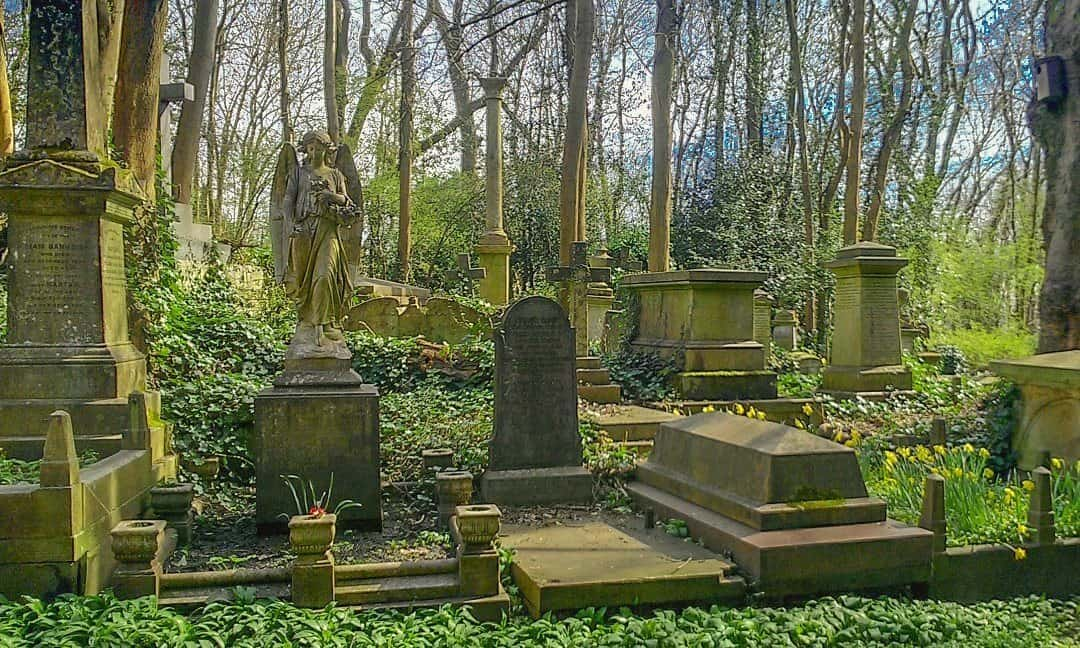 Graves in the western part of Highgate Cemetery, north London.