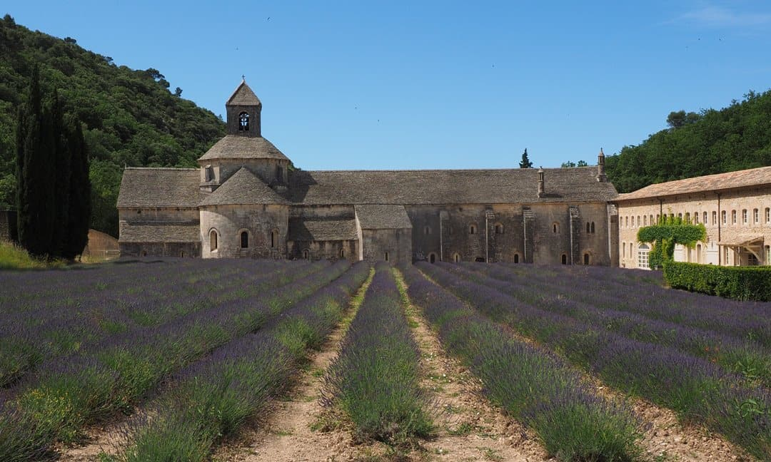 Best Places to See Lavender Fields in Provence for History Buffs