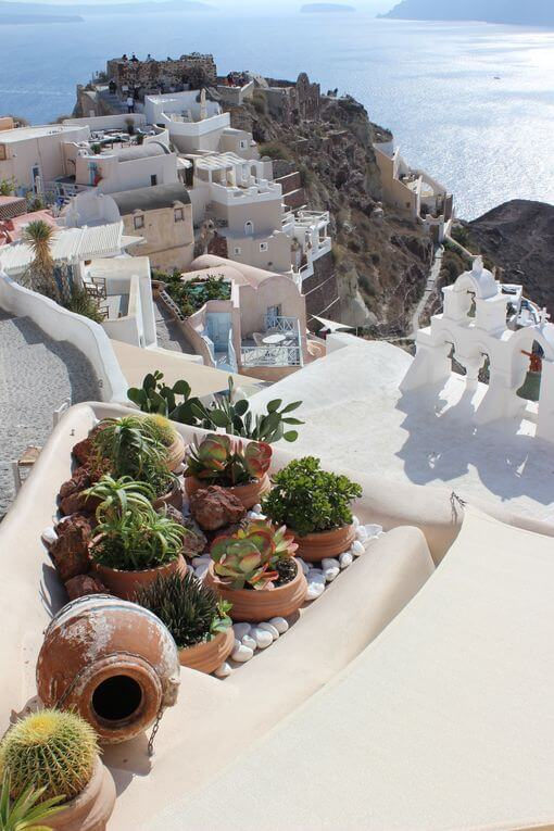 A small cactus garden overlooking rooftops and the sea.