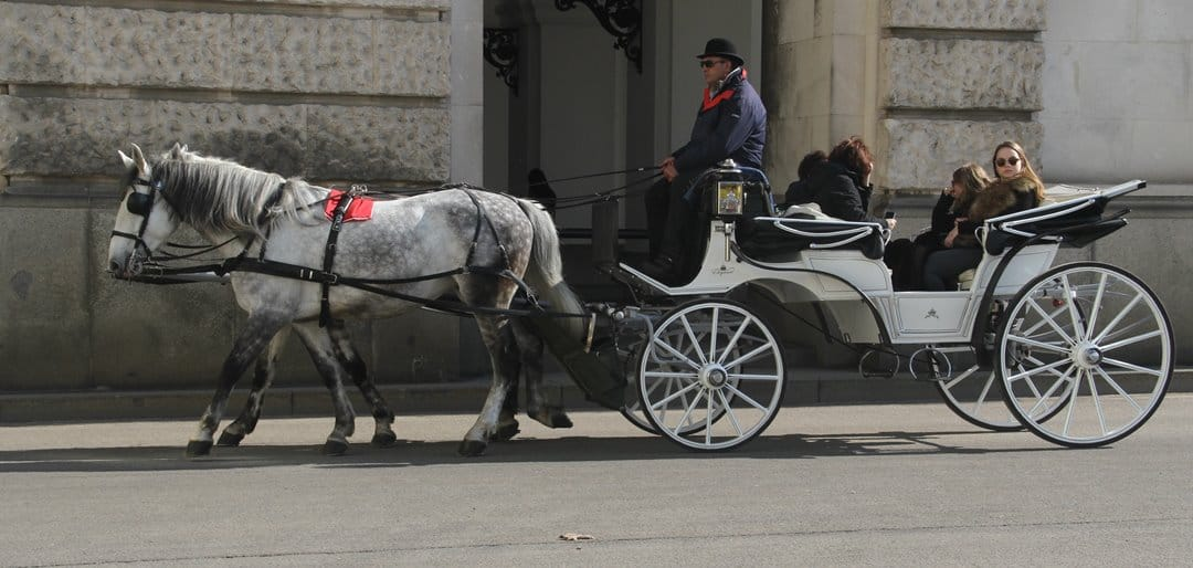 A horse drawn carriage, or fiaker, in Vienna.