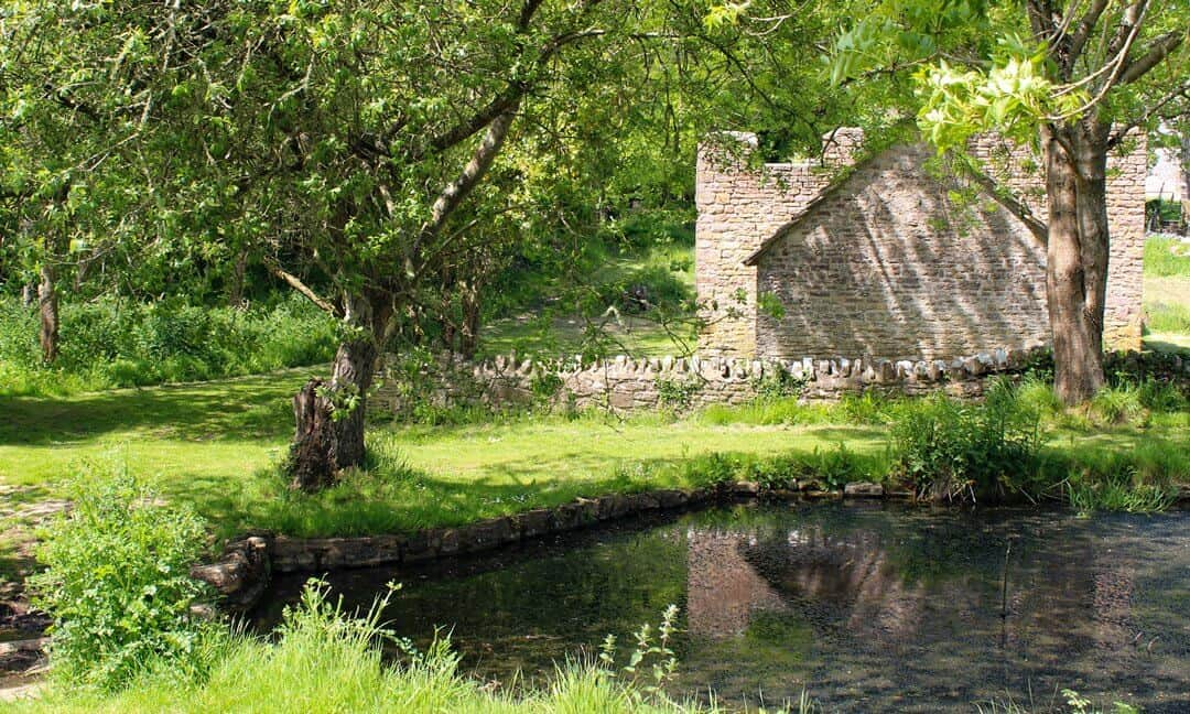 A derelict building behind a pond surrounded by trees and vegetation at Tyneham.