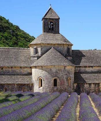 The Notre-Dame de Sénanque Abbey with lavender in flower.