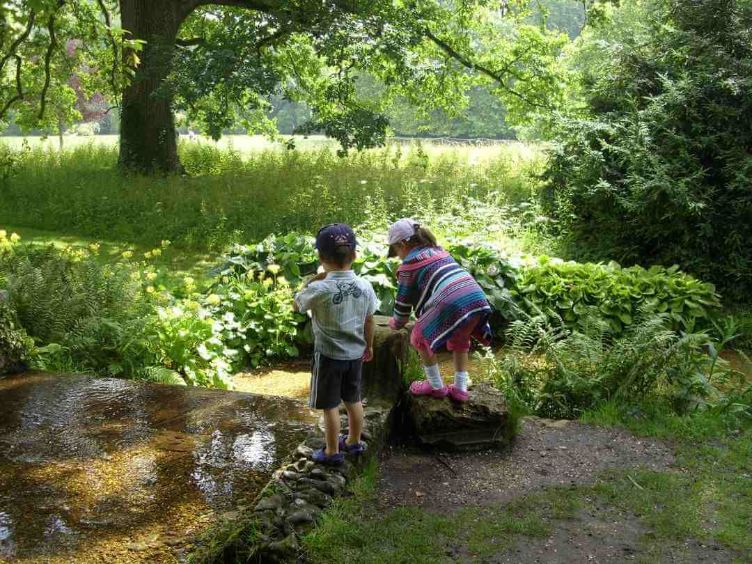 Two small children on the edge of a river looking into the water surrounded by trees and vegetation.