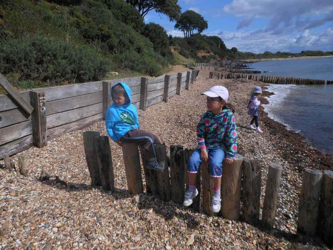 Two young kids sitting on wooden groynes on a beach with trees and sea in the background.