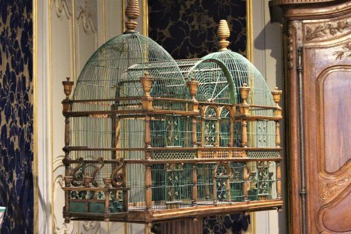 An ornate birdcage.