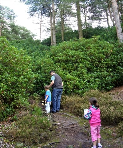 A man and two kids climbing up a steep hill in the garden of Clouds Hill.