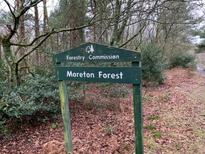 A sign in woodland saying Moreton Forest.