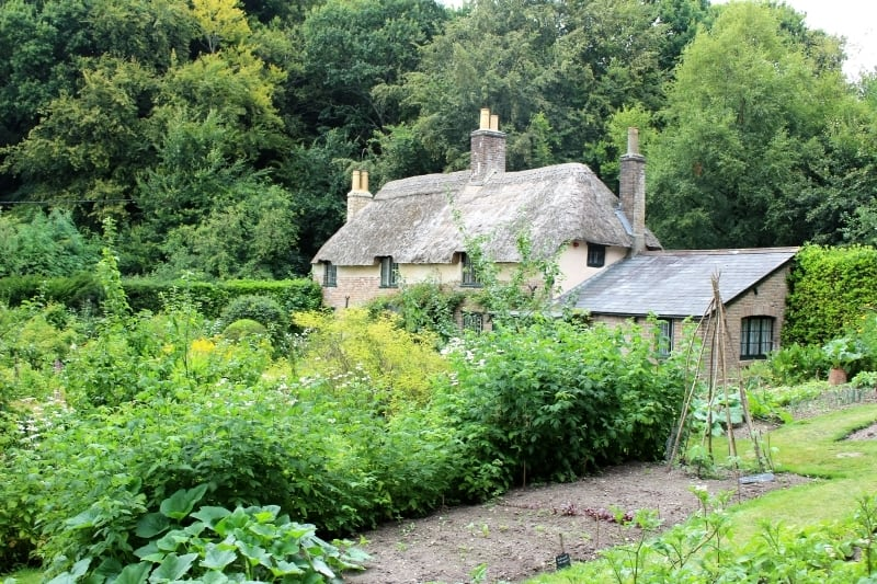 The garden showing vegetable beds in Hardy's cottage.