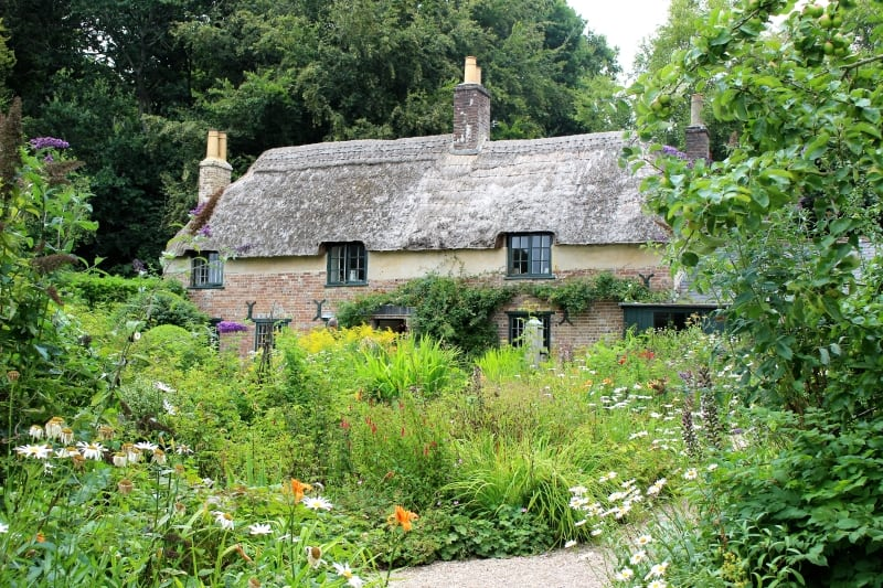 Thomas Hardy's Birthplace – the quintessential English cottage in the heart of Dorset