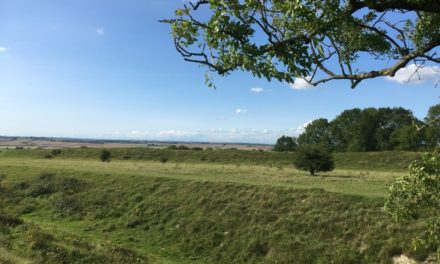 Figsbury Ring: a Prehistoric Site for a Walk in Wildlife