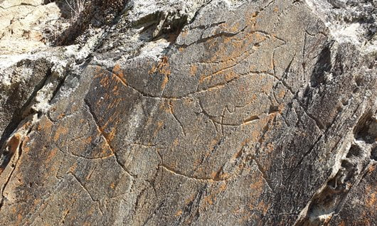 Palaeolithic engravings in the Côa Valley, northern Portugal.