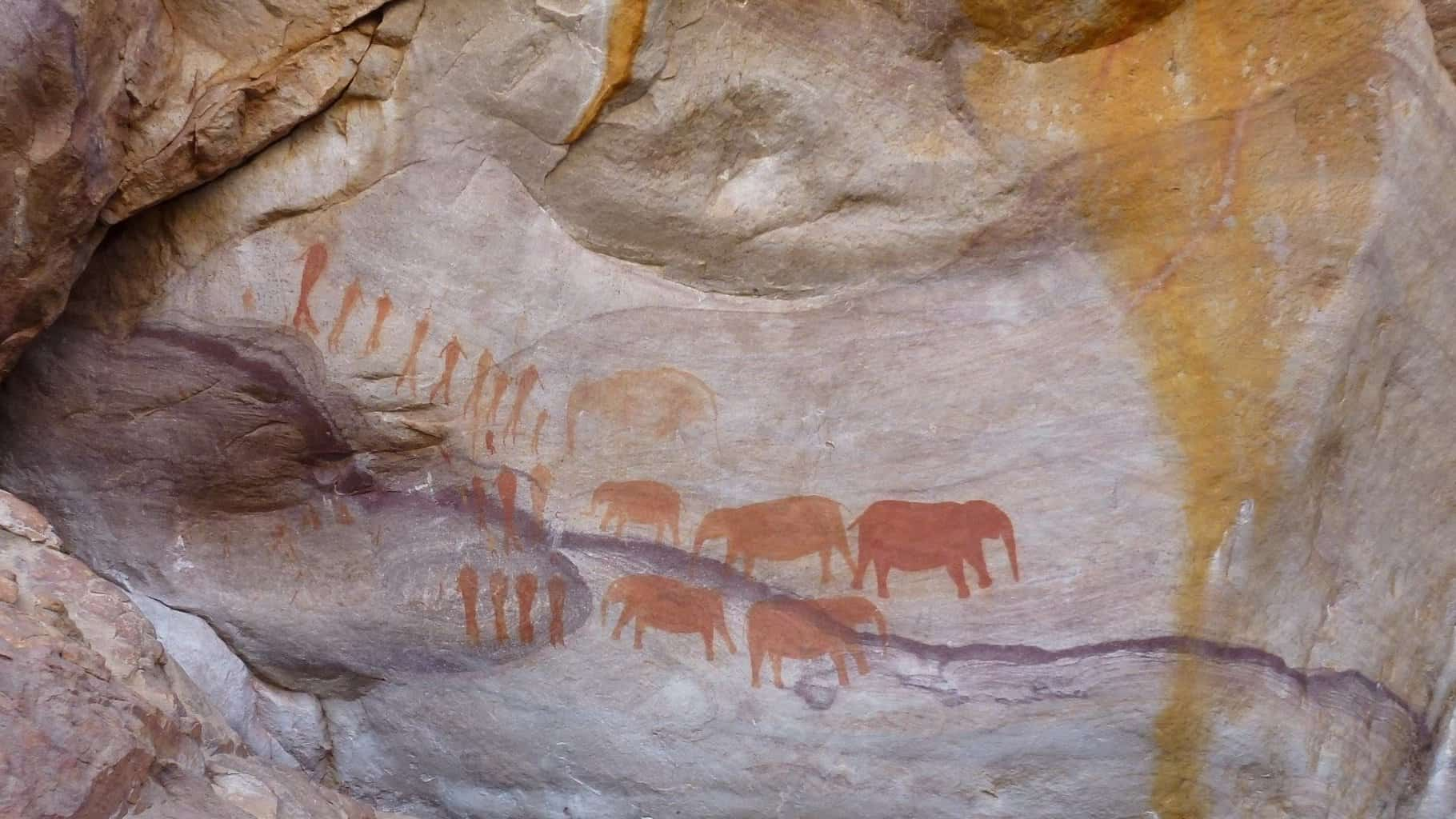 Rock paintings of Elephants from the Southwestern Cape, South Africa.