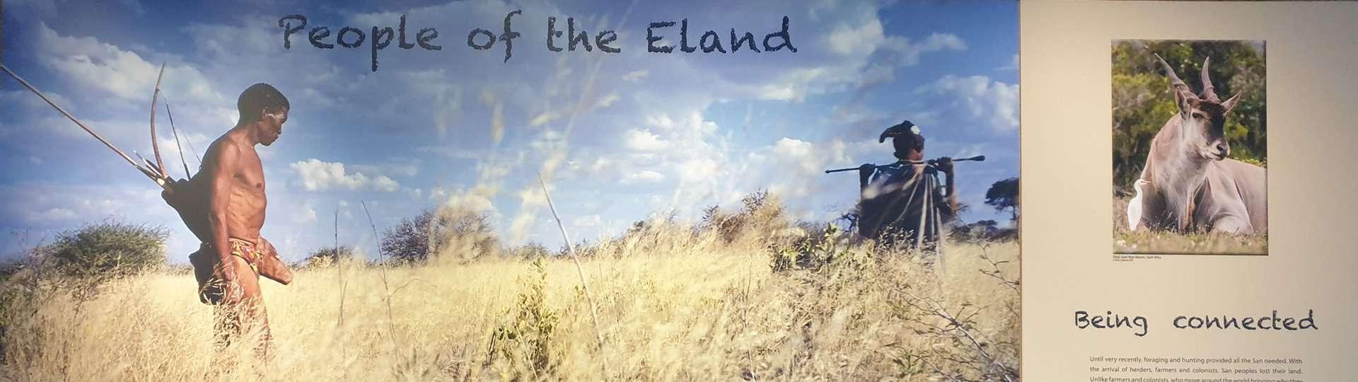 People of the Eland display at !Khwa-ttu.