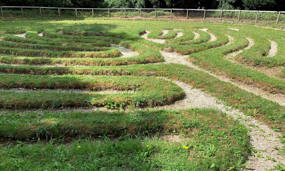 Showing the pattern of the turf cut maze at Breamore.