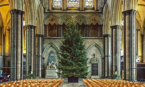 Christmas tree inside Salisbury Cathedral, Wiltshire.